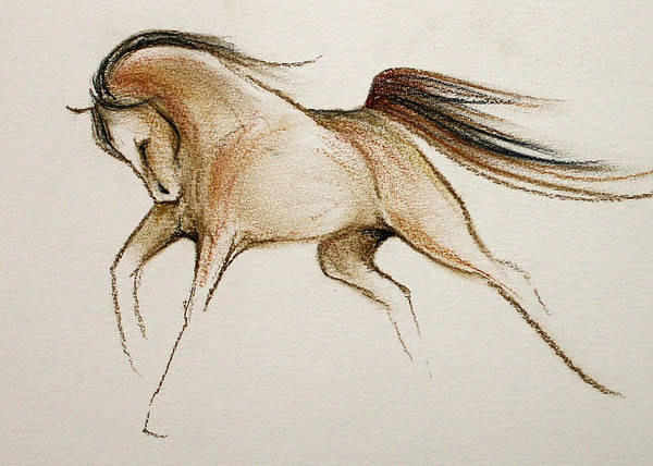 Warmbloods Drawing - Going Bold by Jennifer Fosgate