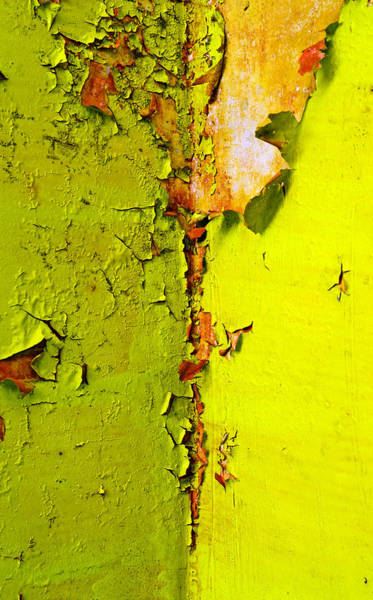 Peeling Photograph - Going Green by Skip Hunt