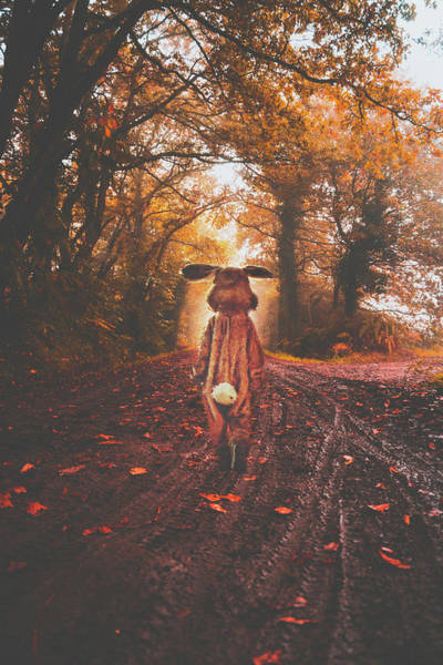 Bunnies Photograph - Going Home by Jacky Gerritsen