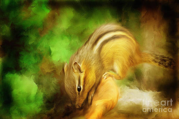 Furry Digital Art - Going Nuts by Lois Bryan
