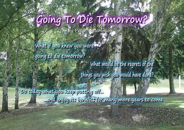 Photograph - Going To Die Tomorrow? by Peter Hutchinson