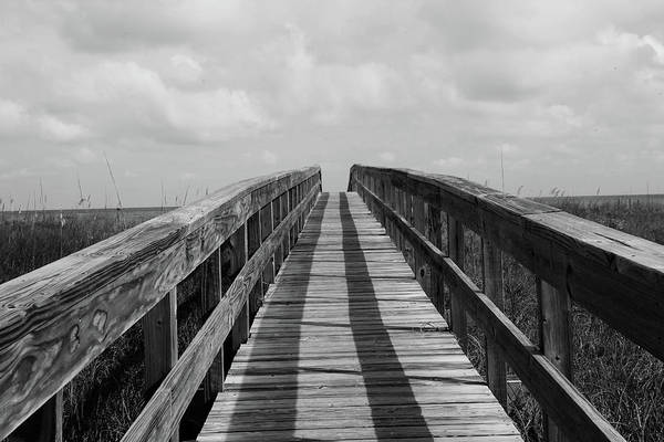 Wall Art - Photograph - Going To The Beach by Toni Hopper