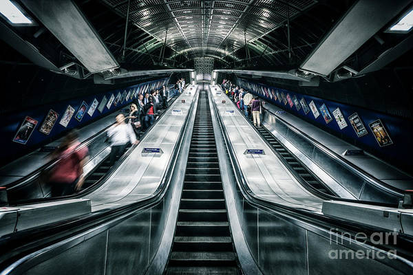 Wall Art - Photograph - Going Underground by Evelina Kremsdorf