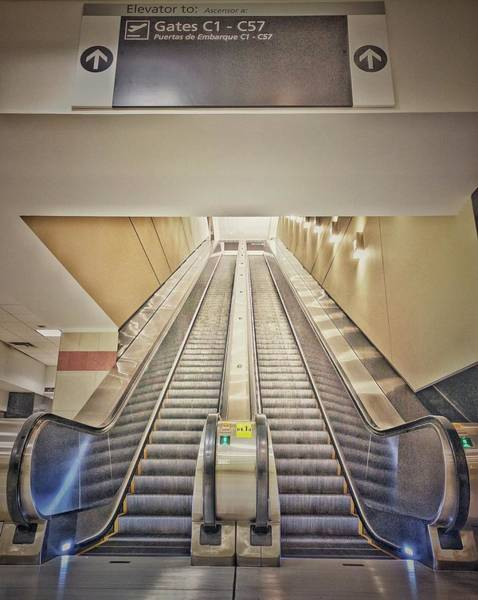 Photograph - Going Up by Mike Dunn