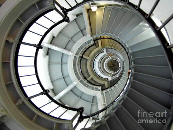 Photograph - Going Up The Spiral Staircase by D Hackett