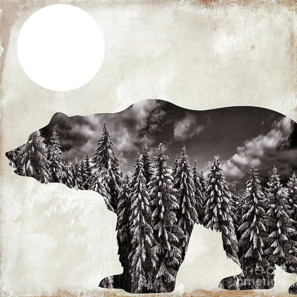 Wall Art - Painting - Going Wild Bear by Mindy Sommers