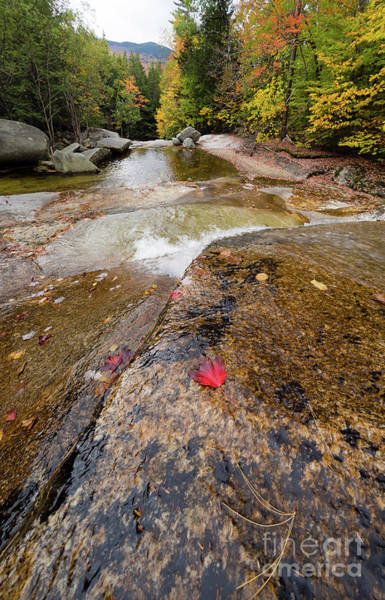 Photograph - Going With The Flow, Step Falls, Newry, Maine #40086 by John Bald