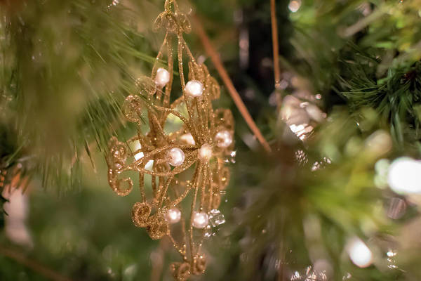 Photograph - Gold And Pearl Ornament by Keith Smith