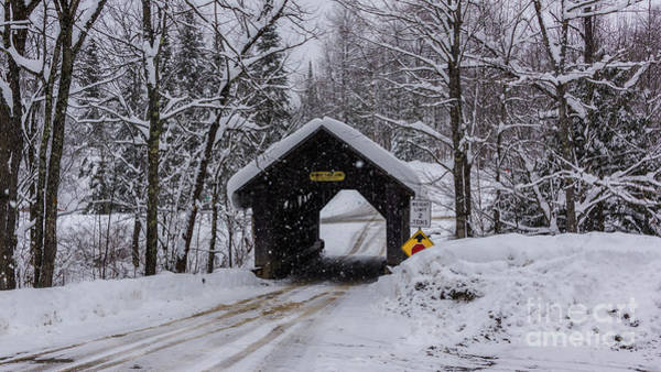Photograph - Gold Brook Covered Bridge/stowe Hollow Bridge/emily's Bridge by Scenic Vermont Photography