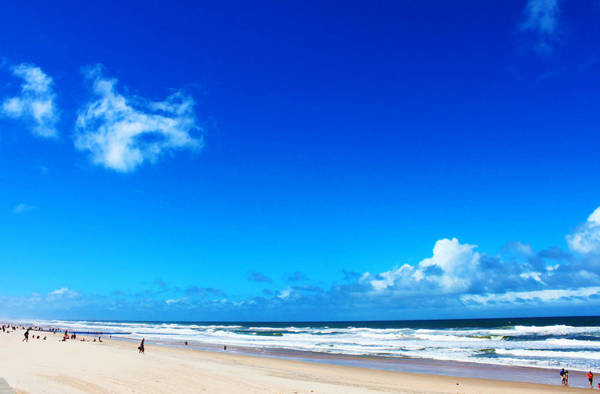 Photograph - Gold Coast Afternoon by Susan Vineyard