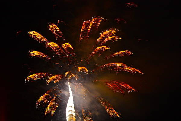 Photograph - Gold Fireworks by Diana Hatcher