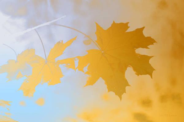 Painting - Gold Leaf II by John Emmett