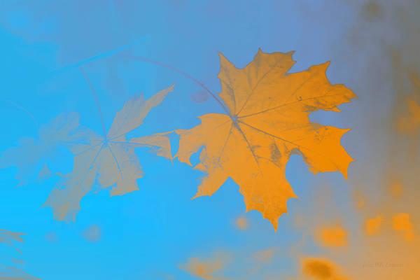 Painting - Gold Leaf by John Emmett