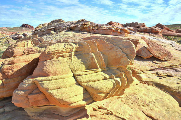 Photograph - Gold Nugget Sandstone In Valley Of Fire by Ray Mathis