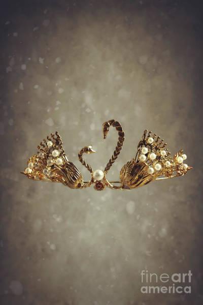 Headdress Photograph - Gold Swans Tiara by Amanda Elwell