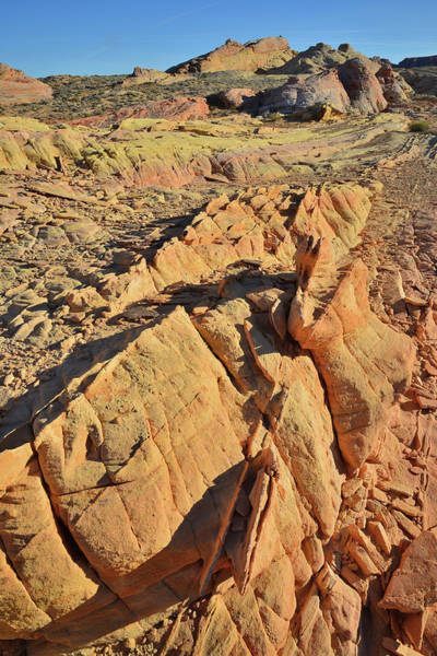 Photograph - Gold Vein In Valley Of Fire State Park by Ray Mathis