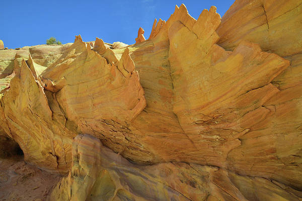 Photograph - Gold Walls And Fins In Wash 3 Of Valley Of Fire by Ray Mathis