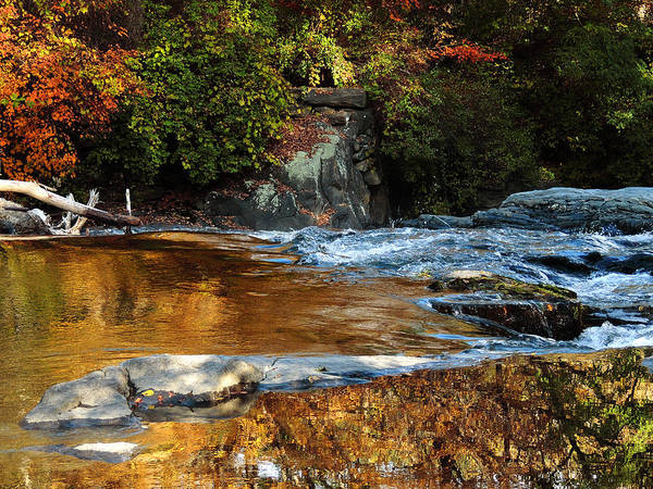 Photograph - Gold Water By The Thetford Bridge by Nancy Griswold