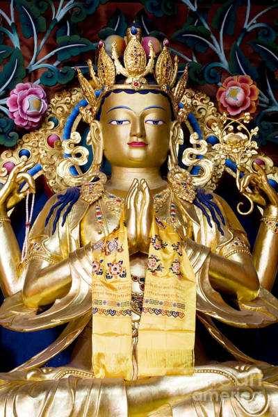 Photograph - Golden Amitaba Buddha Statue by Tim Gainey