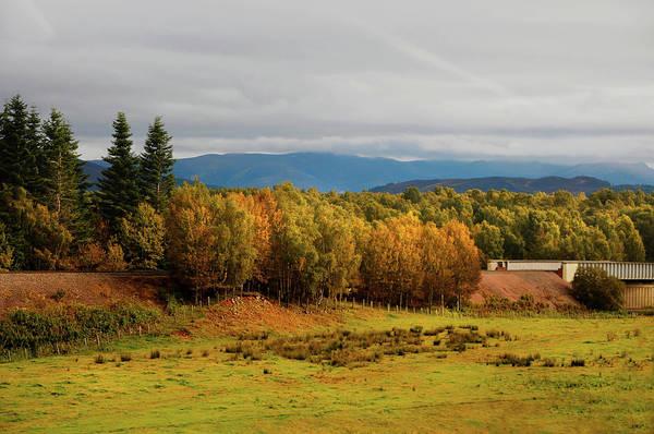 Photograph - Golden Autumn In Scotland by Jenny Rainbow