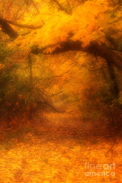 Photograph - Golden Autumn  by Jeff Breiman