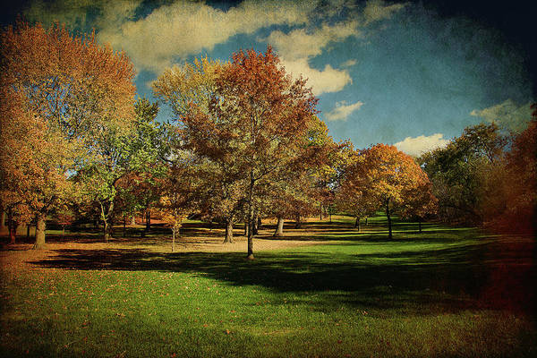 Photograph - Golden Autumn by Milena Ilieva