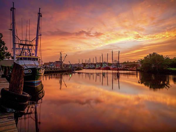 Photograph - Golden Bayou 2 by Brad Boland