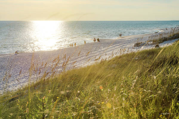 Golden Beach Afternoon Art Print