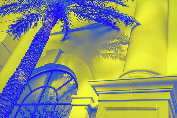 Photograph - Golden Beryl And Blue Sapphire - Jewel Colored Palm And Window by Georgia Mizuleva
