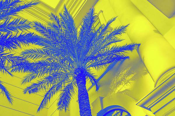 Photograph - Golden Beryl And Sapphire - Jewel Colored Palms by Georgia Mizuleva