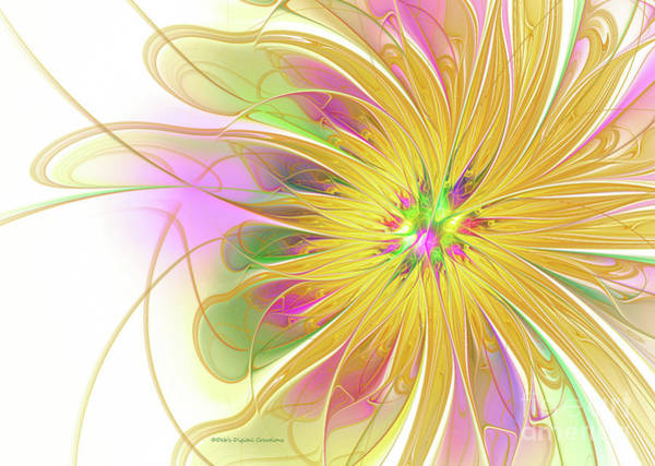 Digital Art - Golden Blossom by Deborah Benoit