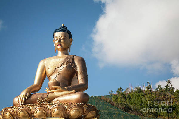 Photograph - Golden Buddha by Scott Kemper