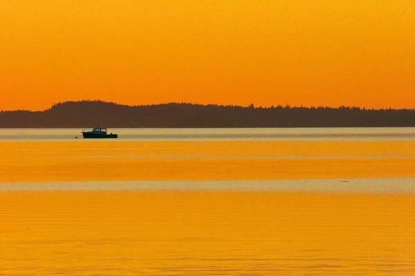 Photograph - Golden Calm by Polly Castor