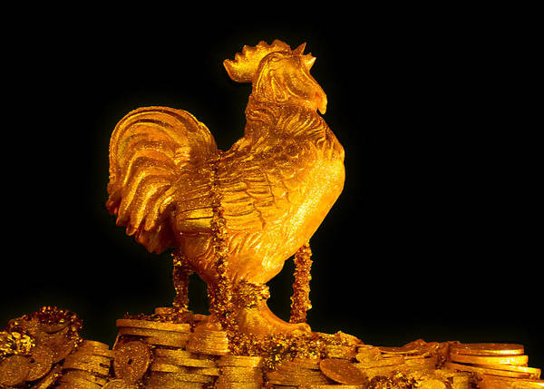 Photograph - Golden Chicken by Bonnie Follett
