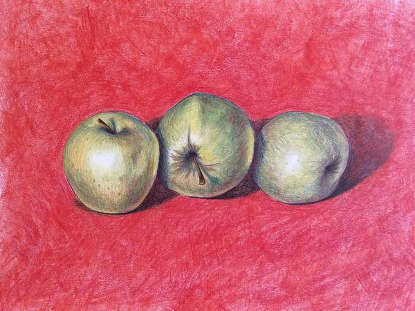 Drawing - Golden Delicious by Lisa DuBois