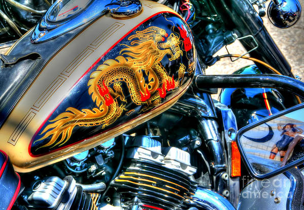 Photograph - Golden Dragon by LR Photography