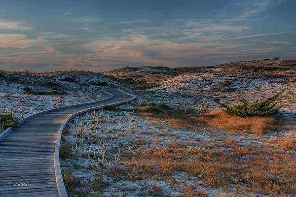 Wall Art - Photograph - Golden Dunes by Bill Roberts