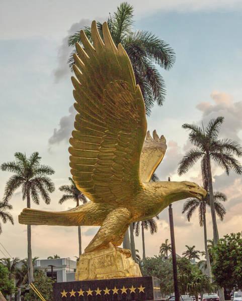 Wall Art - Photograph - Golden Eagle  by Iris Richardson