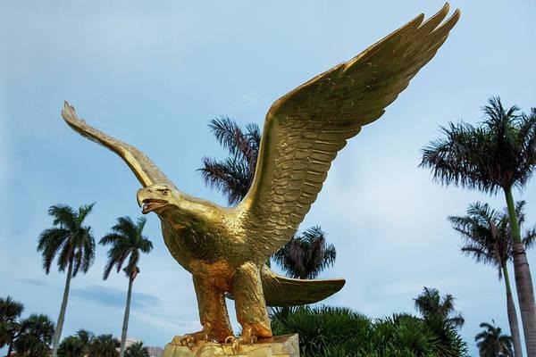 Wall Art - Photograph - Golden Eagle Take Off by Iris Richardson
