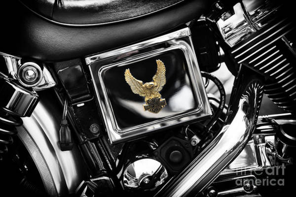 Chrome Engine Photograph - Golden Eagle by Tim Gainey