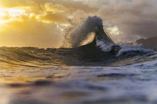 Golden Eye Photograph - Golden Eye by Sean Davey