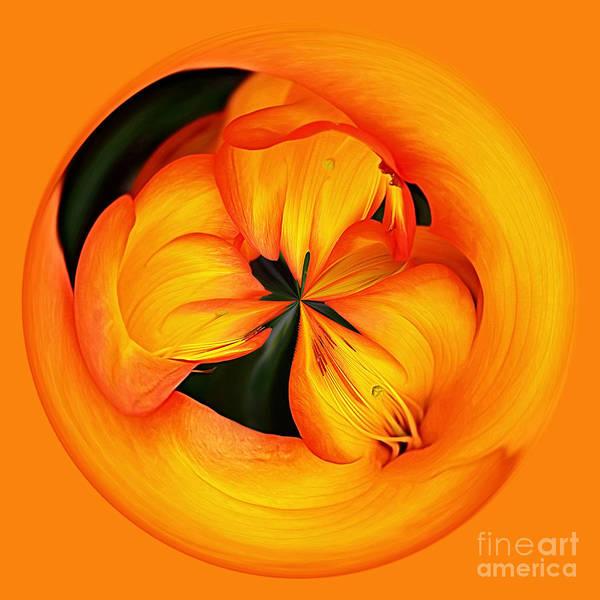 Wall Art - Photograph - Golden Floral Spherical Art By Kaye Menner by Kaye Menner