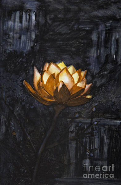 Wall Art - Photograph - Golden Flower On Black Background by Tara Thelen