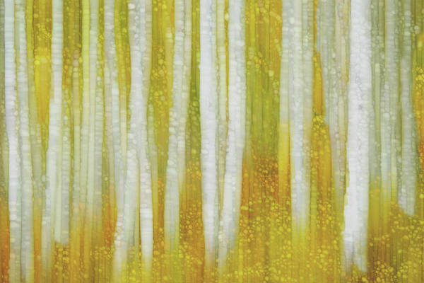 Wall Art - Painting - Golden Forest by Jack Zulli