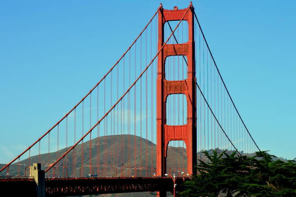 Wall Art - Photograph - Golden Gate by Meeli Sonn