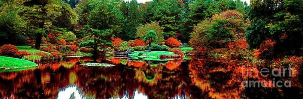 Photograph - Golden Gate Park In San Francisco Japanese Garden by Tom Jelen