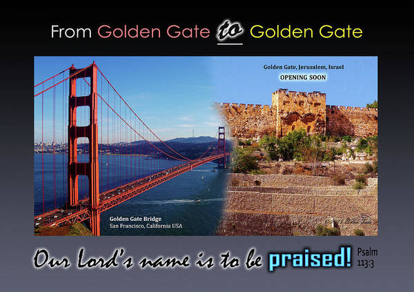Golden Gate To Golden Gate Art Print