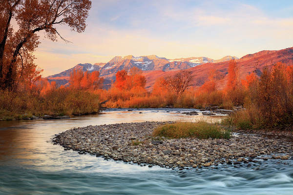 Wall Art - Photograph - Golden Glow At The Provo River. by Johnny Adolphson