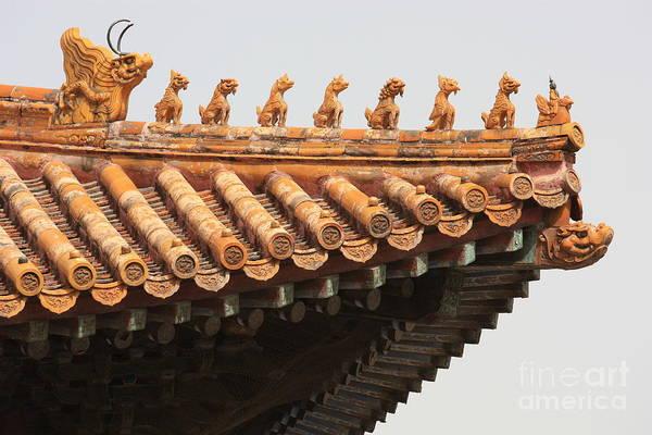 Pinyin Photograph - Golden Guardians Of The Forbidden City by Carol Groenen
