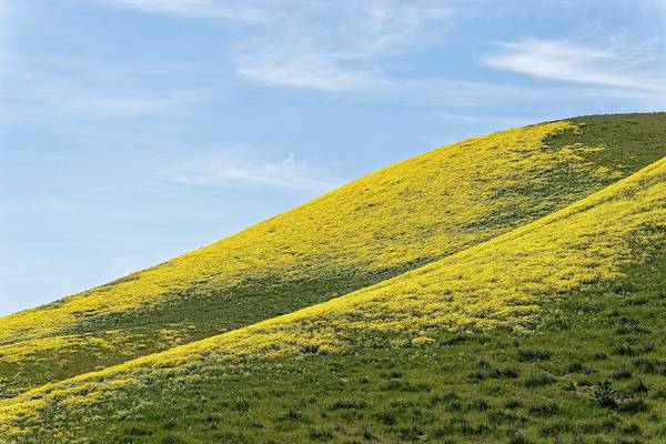 Photograph - Golden Hills Of California by KJ Swan